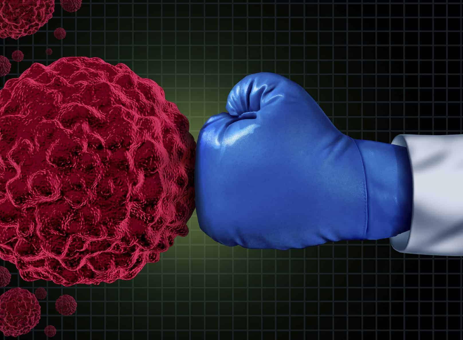 קיטרודה ומערכת החיסון