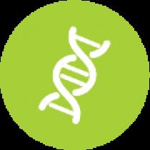 בדיקת ריצוף גנטי עמוק